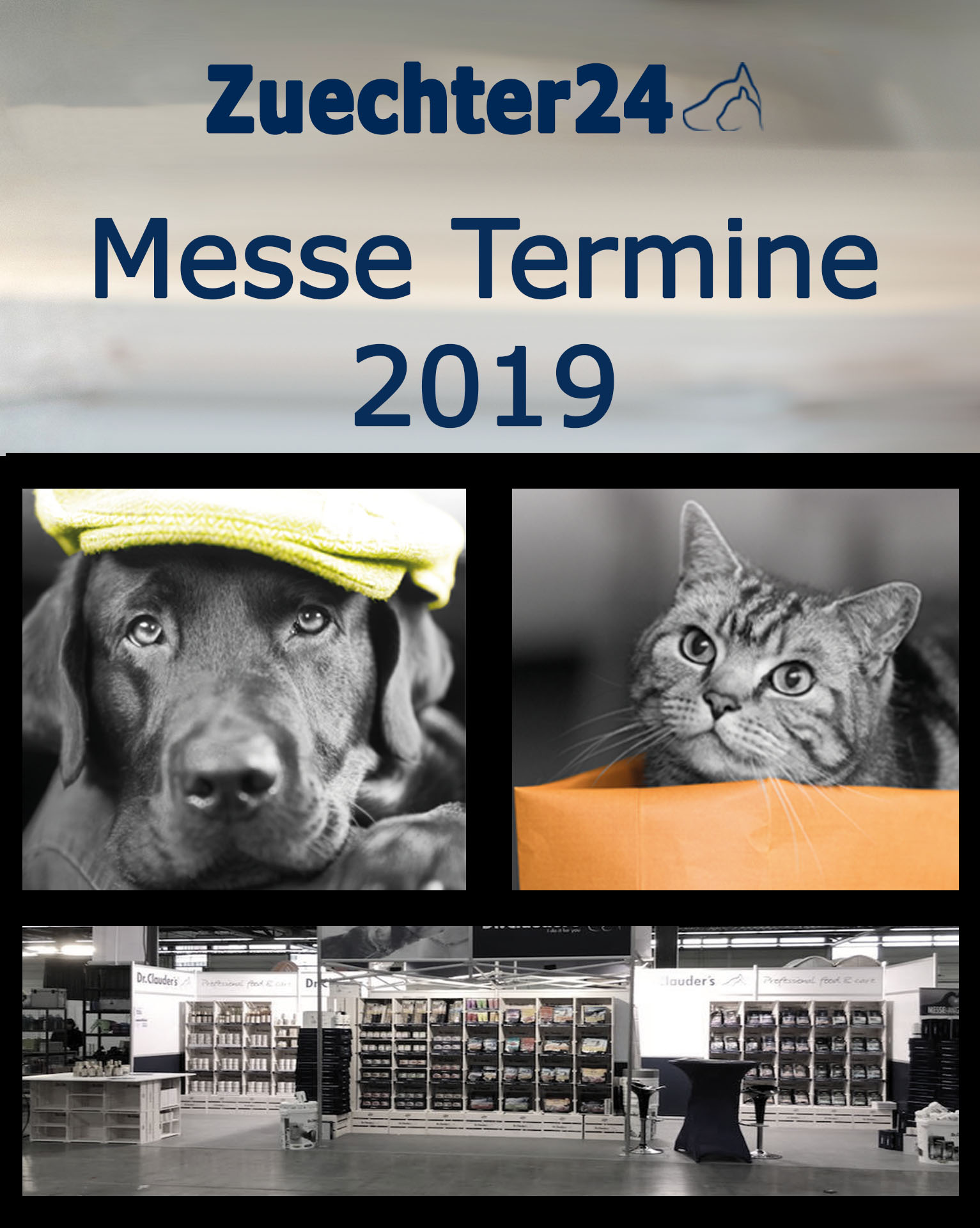 Messe Termine 2019