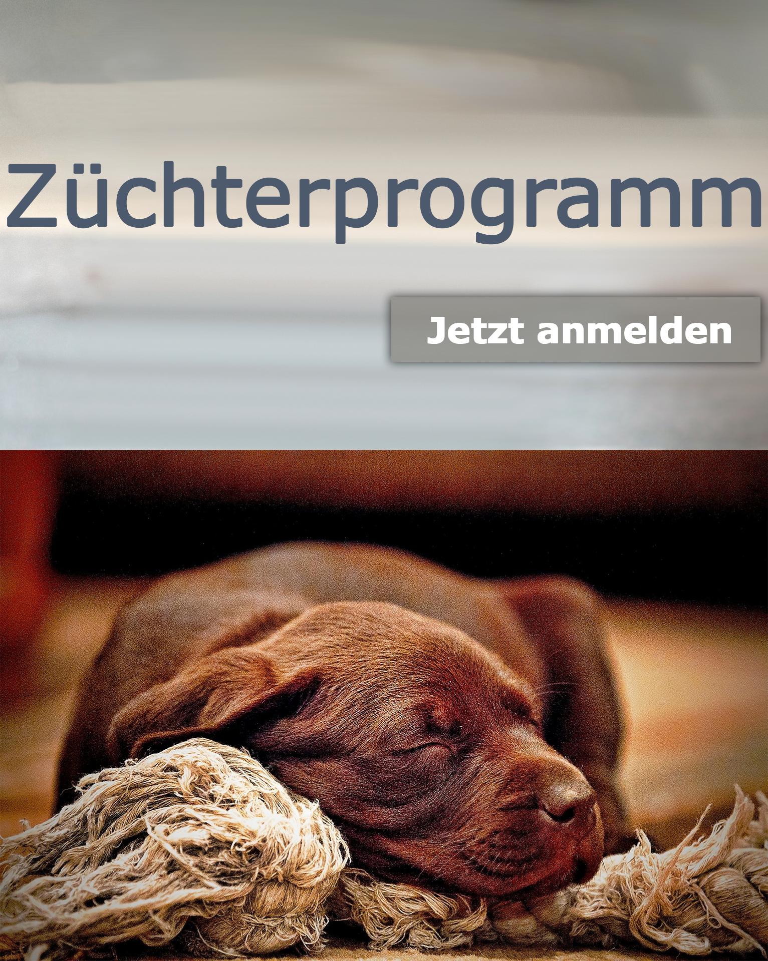 So werden sie Mitglied im  Züchter-/ Hundesportler Programm